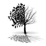 Plant tree silhouette Royalty Free Stock Photos