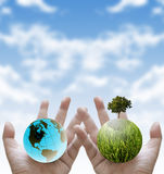 Plant the tree for stop global waming, Sustainable Stock Images