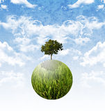Plant the tree for stop global warming, Sustainable Stock Images