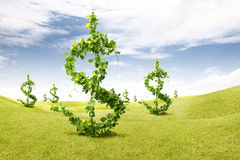 Plant us dollars Royalty Free Stock Photography