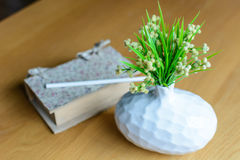 Plant in vase with book. On wooden table Royalty Free Stock Images