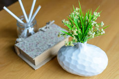 Plant in vase with book Royalty Free Stock Photography