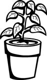 Plant vector illustration Stock Photography