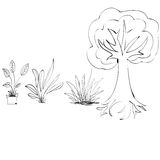 Plant. Vector illustration leaves new plants in bloom Royalty Free Stock Photos