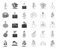 Plant, vegetable mono,outline icons in set collection for design. Garden and harvest vector symbol stock web. Plant, vegetable mono,outline icons in set stock illustration
