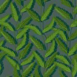 Plant vertical green seamless pattern Stock Images