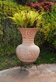 Plant on Vintage Vase Stock Photo