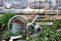 Plant, Water, Grass, Garden stock photo