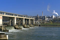 Plant and water works on and in the River Meuse Royalty Free Stock Photography