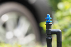 Plant watering micro sprayer sprinkler Royalty Free Stock Images