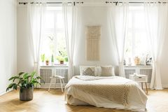 Plant and white chair next to bed with blanket in bright bedroom. Interior with windows. Real photo stock photo