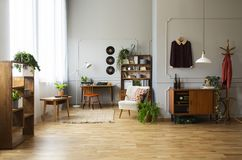 Plant on wooden cabinet and armchair in spacious retro flat interior with chair at desk. Real photo. Concept stock images