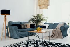 Plant on wooden table near green corner sofa in white living room interior with lamp. Real photo. Concept royalty free stock image