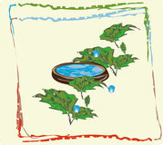 Plant world the water in the vessel. Liquid in a wooden bowl, vegetable green foliage Stock Image