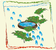 Plant world the water in the vessel 1. Liquid in a wooden bowl, vegetable green foliage Stock Photography