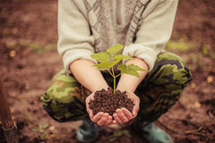 Plant. The young man plants a tree royalty free stock image