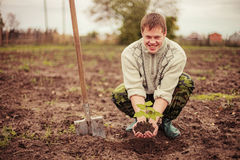 Plant. The young man plants a tree royalty free stock images