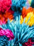 Plantação colorida borrada Imagens de Stock
