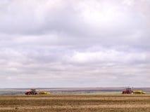 Plantação da soja Foto de Stock