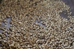 Plantação de café, Boquete, Panama12 Imagens de Stock Royalty Free