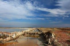 A plantação de sal Foto de Stock