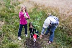 Plantação e molhar Fotos de Stock Royalty Free
