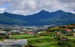 Plantação em montanhas de Dalat, Vietname Imagens de Stock
