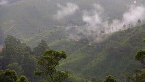 Plantações de chá no Kandy à viagem de trem de Ella - Sri Lanka fotografia de stock