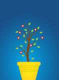 Planta Foto de Stock