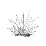 Planta stock de ilustración