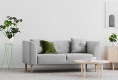 Planta al lado del sofá gris en el interior blanco de la sala de estar con la tabla y el cartel de madera Foto verdadera imágenes de archivo libres de regalías