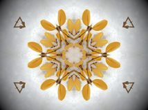 Planta amarilla en mandala de la nieve Imágenes de archivo libres de regalías