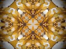 Planta amarilla en mandala de la nieve Imagen de archivo