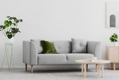 Planta ao lado do sofá cinzento no interior branco da sala de visitas com tabela e o cartaz de madeira Foto real imagens de stock royalty free
