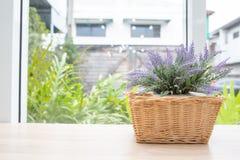 Planta artificial en cesta en la tabla de madera con el backgroun del jardín imagen de archivo libre de regalías