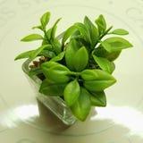 Planta artificial para la decoración Decoración moderna realista de la planta fotos de archivo