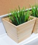 Planta artificial verde en un pote de madera Imagen de archivo