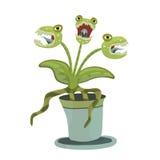 Planta carnívora em um potenciômetro Vector a ilustração para Dia das Bruxas, isolada no branco ilustração do vetor