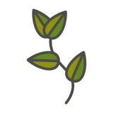 Planta com projeto das folhas Imagens de Stock Royalty Free