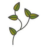 Planta com projeto das folhas Fotografia de Stock Royalty Free