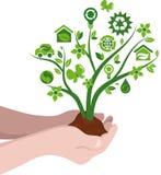 Planta con los iconos de la ecología