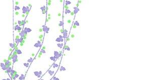 planta creciente de la vegetación de las ramas de la baya de la primavera 4k ilustración del vector