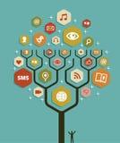Planta da árvore do negócio do mercado do Web Imagens de Stock