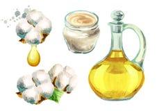 Planta de algodón, aceite de semillas de algodón, crema con los extractos del algodón Ejemplos de la acuarela fijados libre illustration