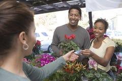 Planta de compra da flor dos pares felizes no jardim bot?nico Imagem de Stock Royalty Free