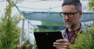 Planta de examen del jardinero en jardín del cuarto de niños metrajes