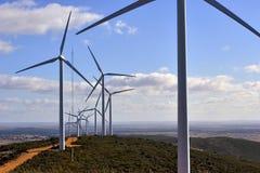 Planta de la energía eólica imagen de archivo