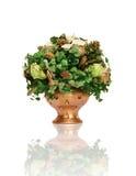 Planta de Patricks de Saint Fotos de Stock