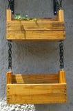 Planta de potenciômetro de suspensão Foto de Stock Royalty Free