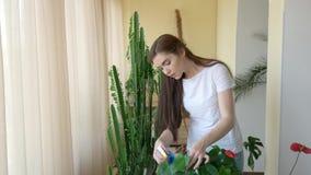 Planta de rociadura de la mujer almacen de video